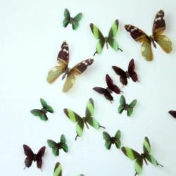 Pack de 18 papillons 3D adhésifs chics translucides vert