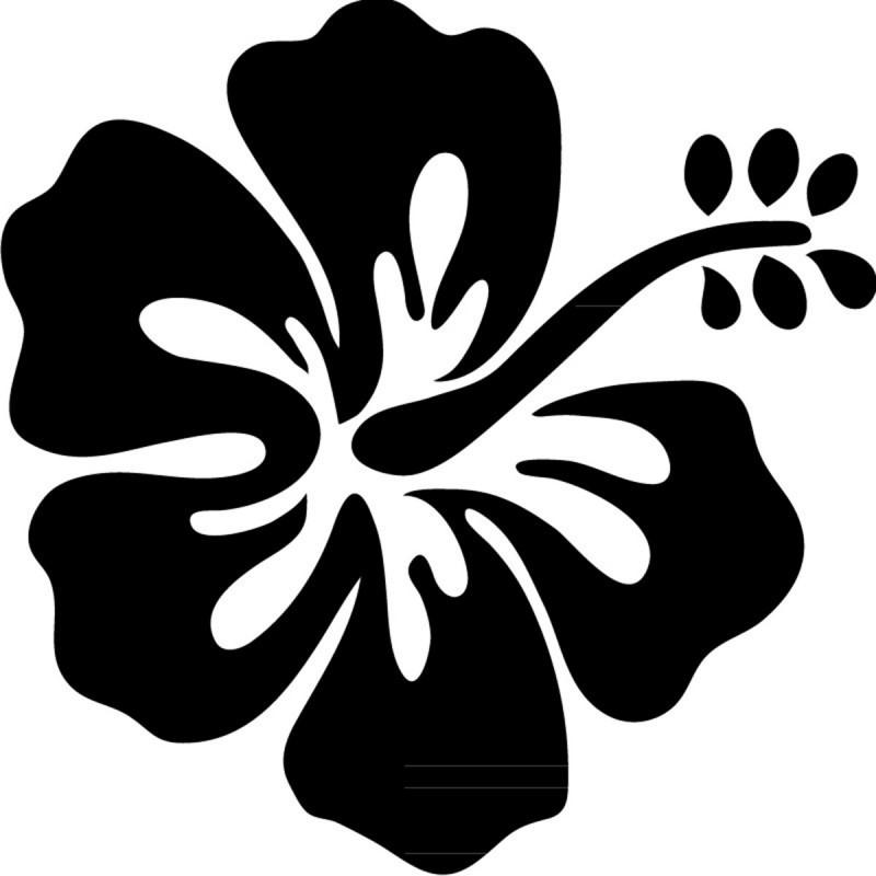 Sticker fleur d 39 hibiscus pas cher stickers nature - Fleur d hibiscus dessin ...