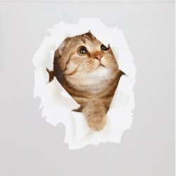 Sticker Chat dans une cachette